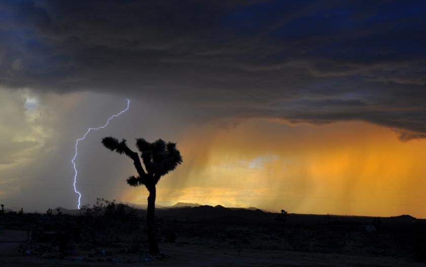 Desert_Electric